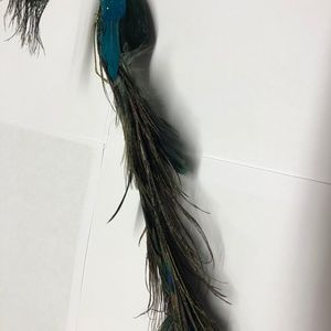 Other - Peacock Christmas Holiday Tree Ornament Feathers
